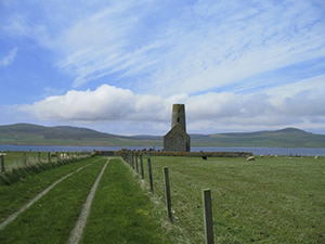 Walks Orkney Author: Felicity Martin