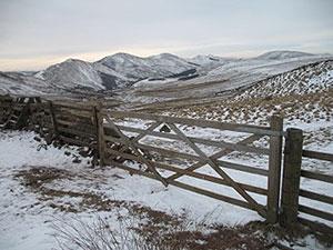 Walks Edinburgh, Midlothian & West Lothian Author: Richard Hallewell